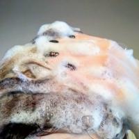 Шампунь Natura Siberica Oblepikha облепиховый Питание и восстановление с эффектом ламинирования для ослабленных и поврежденных волос - фото